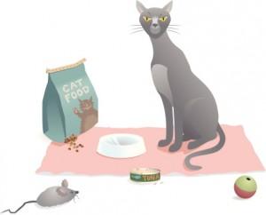Katzenfutter ohne Zusatzstoffe
