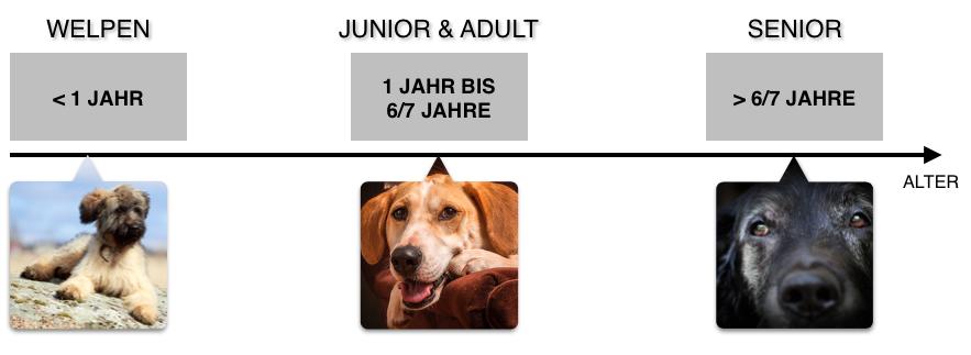 HUNDEFUTTER NACH ALTER SORTIERT - WELPEN, JUNIOR, ADULT UND SENIOR